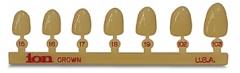 Couronnes polycarbonate C 180 / Incisives centrales supérieures  Incisives centrales supérieures / Gauches 3M 165803
