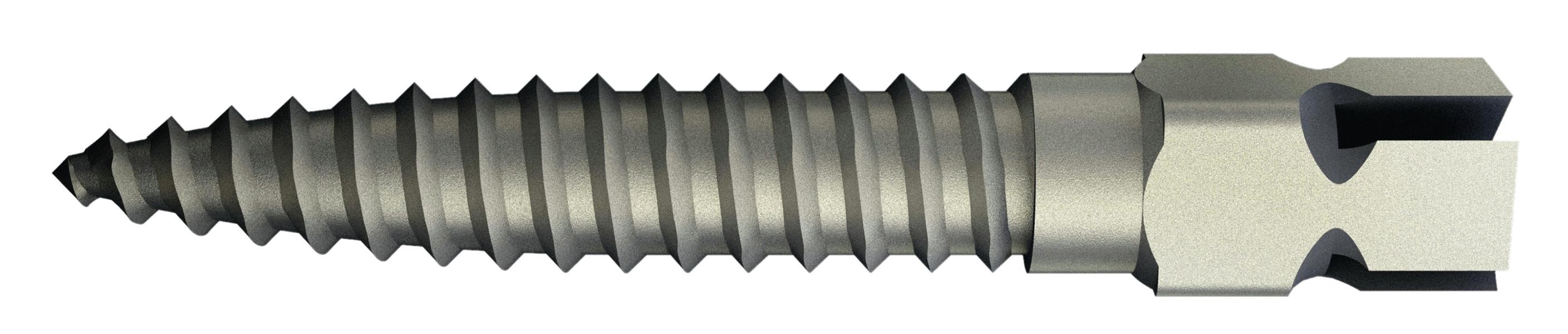 Tenons Surtex Inox Recharge tenon court (Longueur  7,8 mm) Dentatus 170512